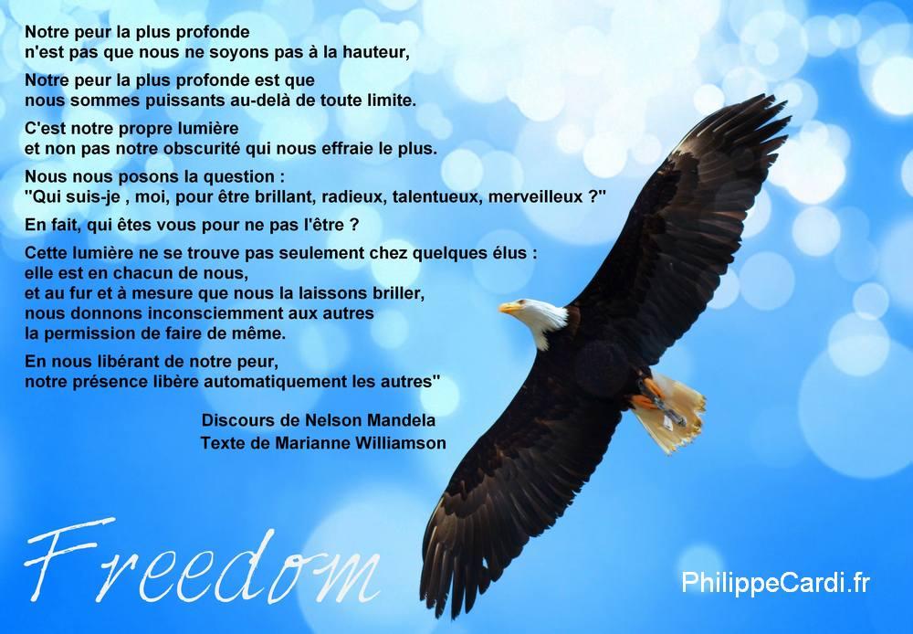 Philippe Cardi - Freedom
