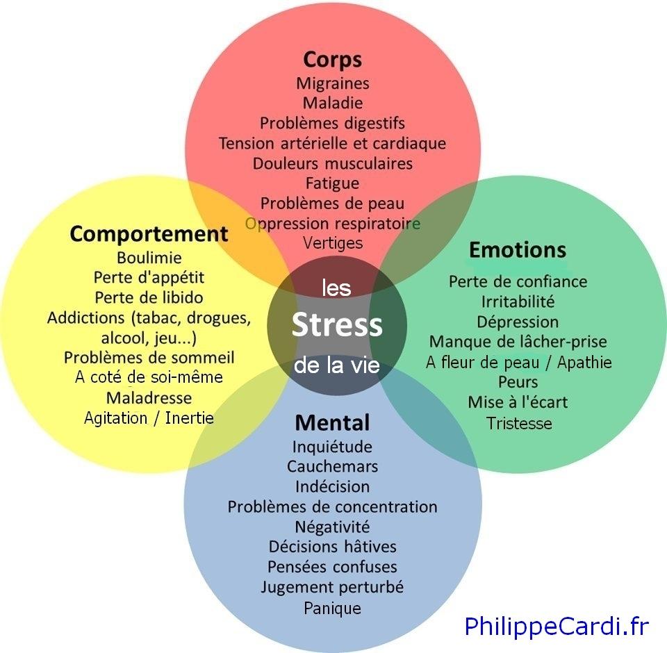 Conséquences des stress de la vie